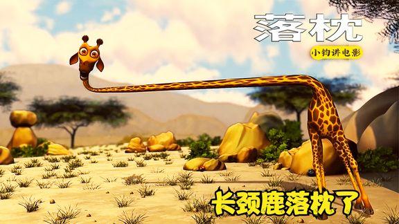 《短颈鹿短颈鹿》_长颈鹿落枕了,一番折腾,变成了短颈鹿,搞笑动画《短颈鹿》